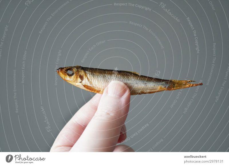 Kiel sprat Food Fish Nutrition Hand Fingers 1 Human being To hold on Germany Snack Cooking Gourmet keel sprat Kipper Smoked Small Herring Specialities