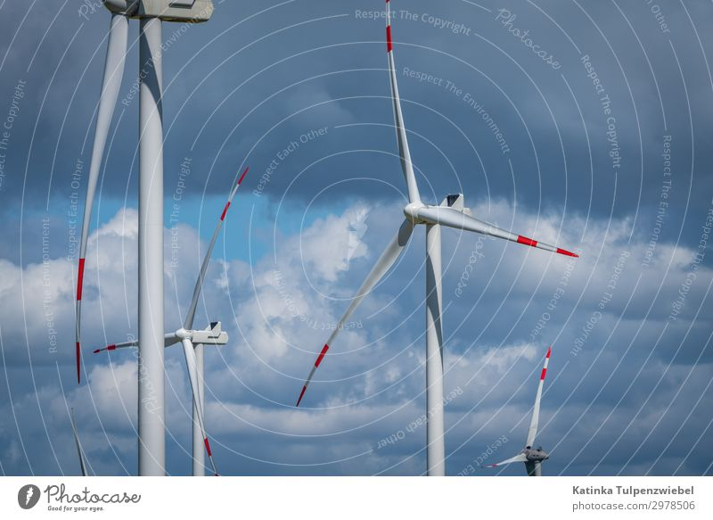Windkraft in Norddeutschland Nature Blue White Landscape Red Clouds Environment Spring Gray Park Energy industry Technology Esthetic Industry Climate
