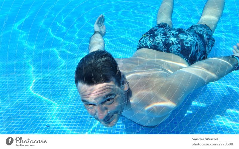 Diving in the pool Healthy Eating Athletic Fitness Relaxation Swimming & Bathing Leisure and hobbies Summer Summer vacation Swimming pool Masculine Man Adults