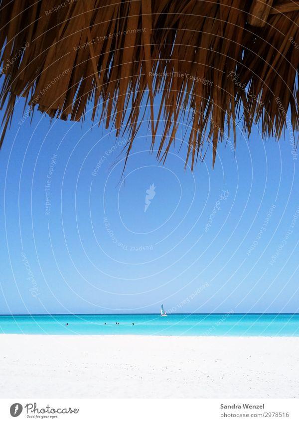 Varadero Wellness Vacation & Travel Tourism Trip Adventure Far-off places Freedom Sightseeing Cruise Safari Summer Summer vacation Sun Sunbathing Beach Ocean
