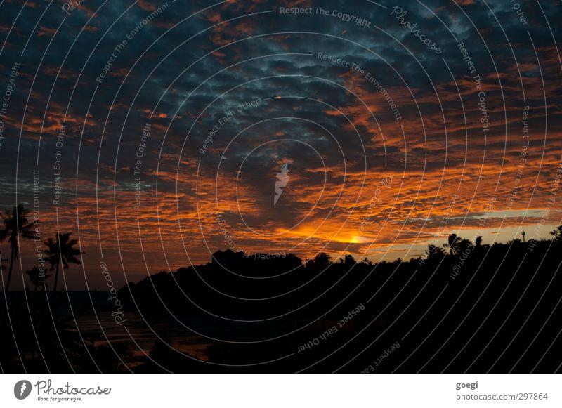 Sky Blue Vacation & Travel Plant Sun Red Ocean Landscape Clouds Black Environment Yellow Coast Horizon Orange Island