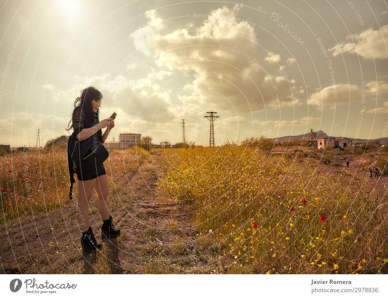 Lonely lost brunette watching her phone in the countryside Calm Freedom Summer Sun Telephone Technology Woman Adults Landscape Sky Clouds Horizon Flower Grass