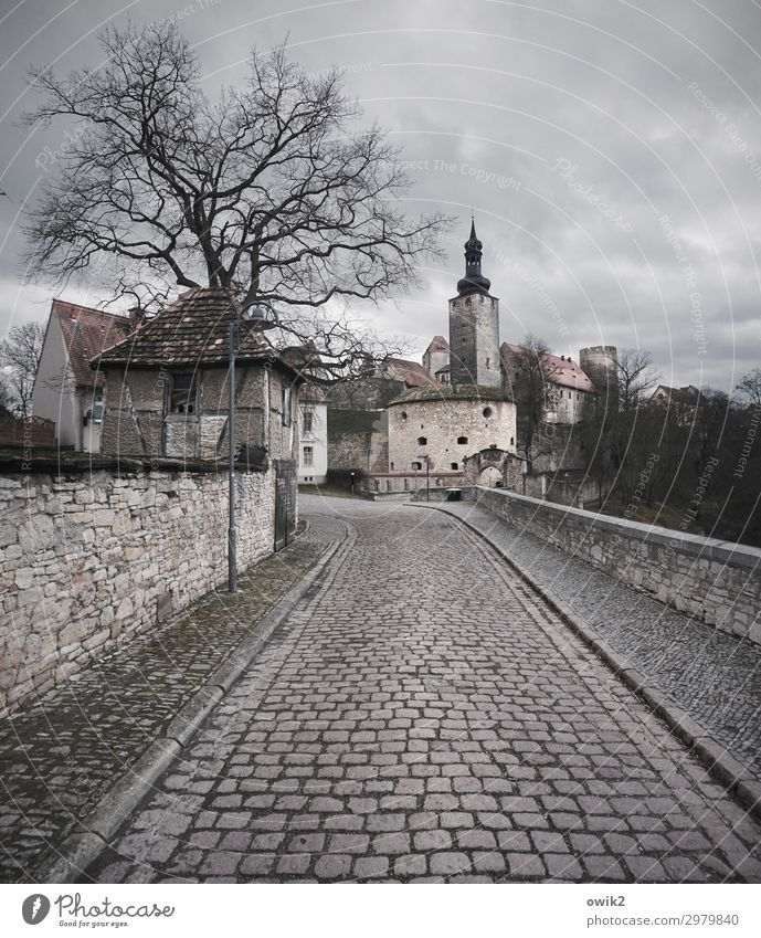 transverse ford Saxony-Anhalt Germany Small Town Downtown Old town Populated House (Residential Structure) Castle Wall (barrier) Wall (building) Facade Street