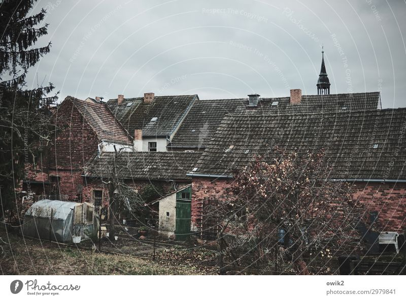pigitz Germany Saxony-Anhalt Village Populated House (Residential Structure) Church Wall (barrier) Wall (building) Facade Garden Window Roof Old Dark Simple
