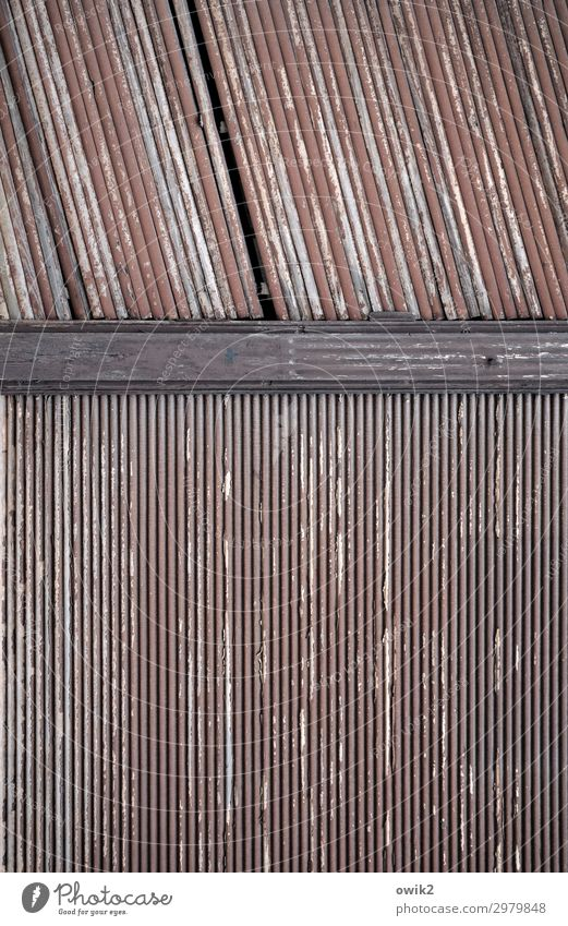 Wooden packaging Roller blind Old Brown Decline Past Transience Damage Ravages of time Colour photo Subdued colour Exterior shot Close-up Detail Abstract