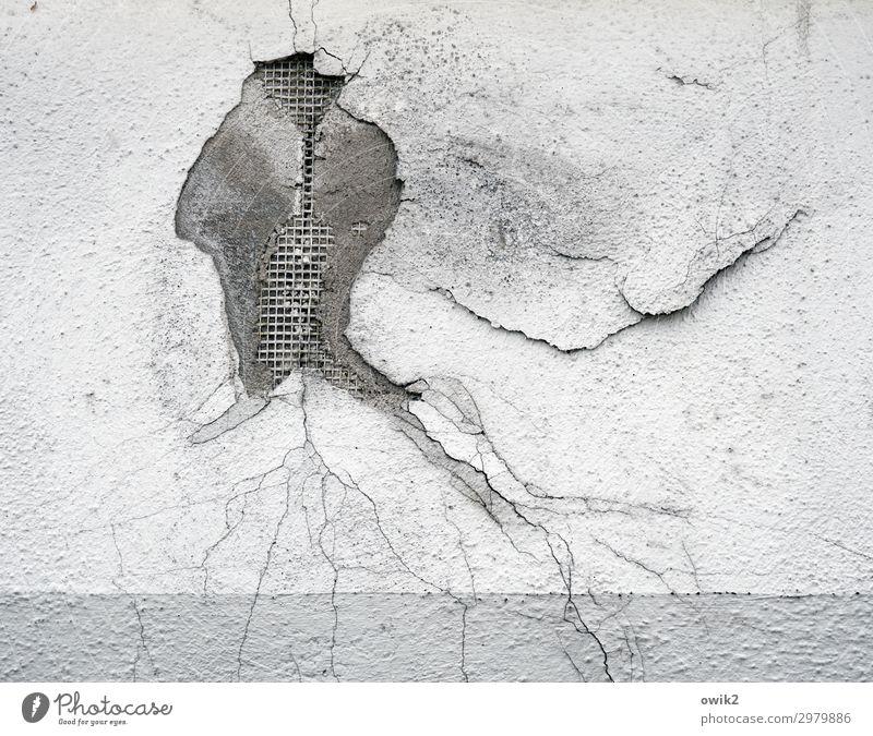 Medusa Wall (barrier) Wall (building) Facade Plaster Flake off Old Dry Decline Transience Destruction Crack & Rip & Tear Hollow Damage Ravages of time Derelict