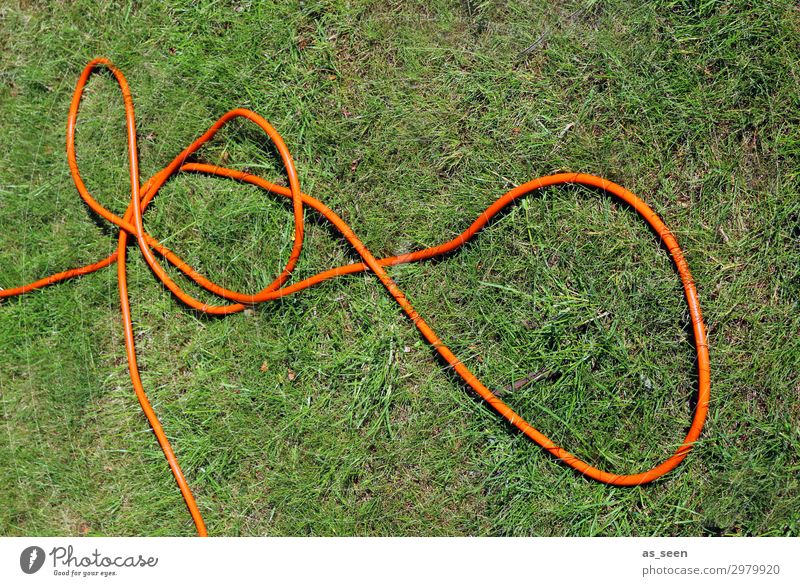 Garden hose II Environment Nature Plant Earth Water Summer Grass Lawn Park Meadow Knot Lie Authentic Brash Green Orange Spring fever Determination Colour