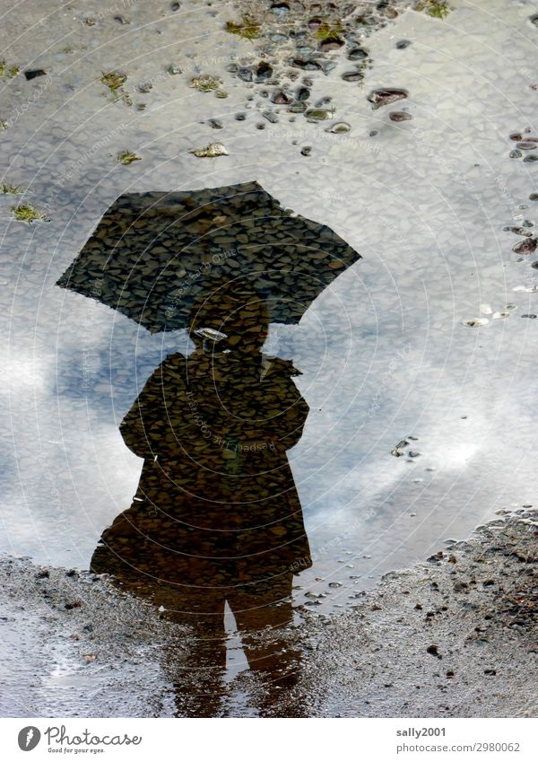 With umbrella (charm and melon...) Human being Feminine 1 Dirty Cold Wet Umbrellas & Shades Rain Puddle Asphalt Stone Mud Reflection Colour photo Subdued colour
