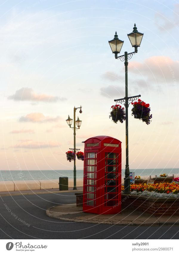 Brexite is done... England Phone box Red British English Tradition Telephone brexite Telecommunications Great Britain Communicate Retro Ocean coast flowers