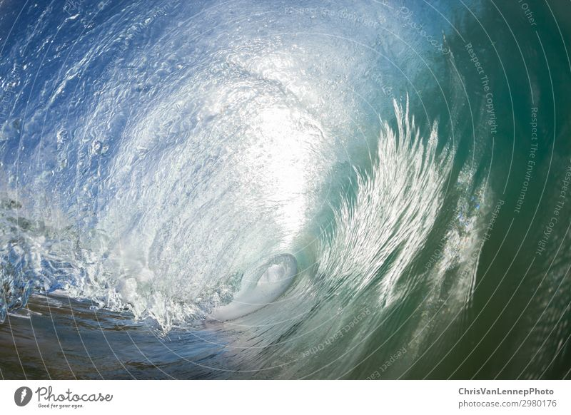 Wave Swimming Hollow Tube Ocean Waves Sports Fitness Sports Training Swimming & Bathing Media Print media Newspaper Magazine Nature Sand Sky Reef Blue Energy