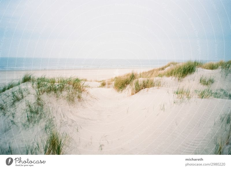 Sandy dune Wellness Well-being Contentment Vacation & Travel Trip Summer vacation Environment Nature Clouds Weather Plant Bushes Waves Coast Beach North Sea