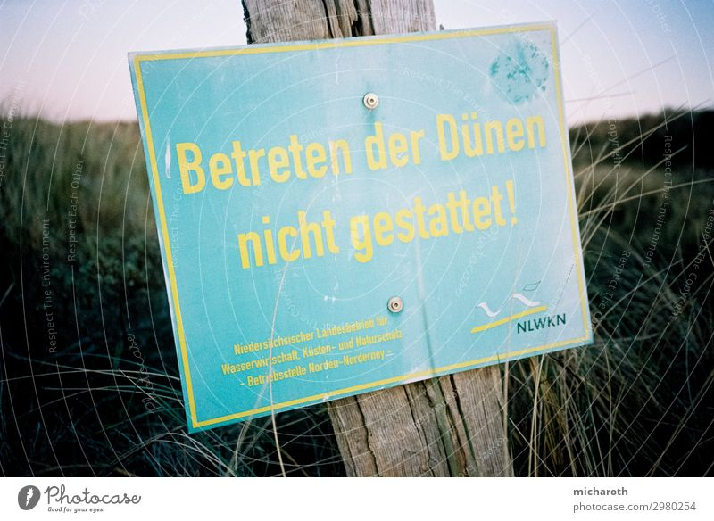 Do not enter the dune! Healthy Health care Fitness Vacation & Travel Tourism Freedom Summer vacation Environment Nature Landscape Plant Sand Spring Climate