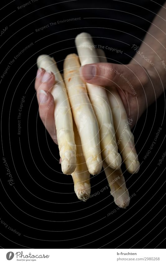 White asparagus Food Vegetable Nutrition Organic produce Vegetarian diet Healthy Healthy Eating Kitchen Man Adults Hand Fingers Work and employment Select Touch