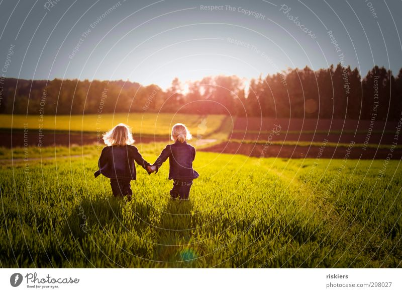 small soul mates Human being Feminine Child Girl Brothers and sisters Sister Infancy Life 2 3 - 8 years Nature Spring Summer Beautiful weather Meadow Field