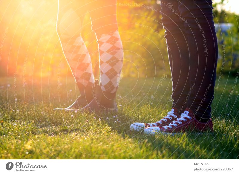 trendsetter Lifestyle Summer Garden Feminine Youth (Young adults) Legs 2 Human being 13 - 18 years Child Environment Nature Spring Beautiful weather Grass