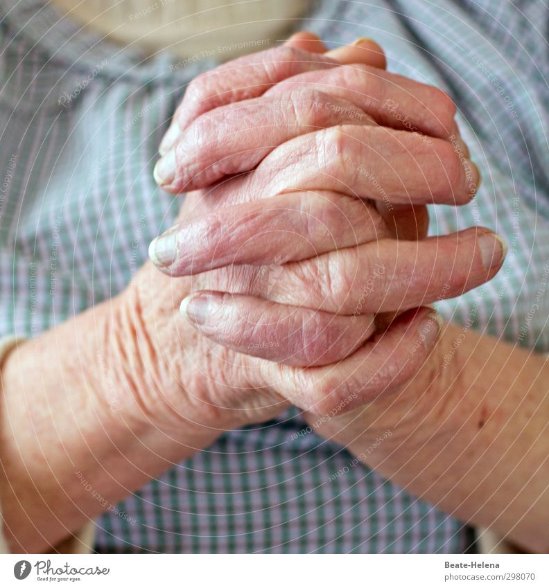 Woman Blue Old Hand Calm Relaxation Senior citizen Life Healthy Work and employment Pink Contentment Wait Living or residing Fingers 60 years and older