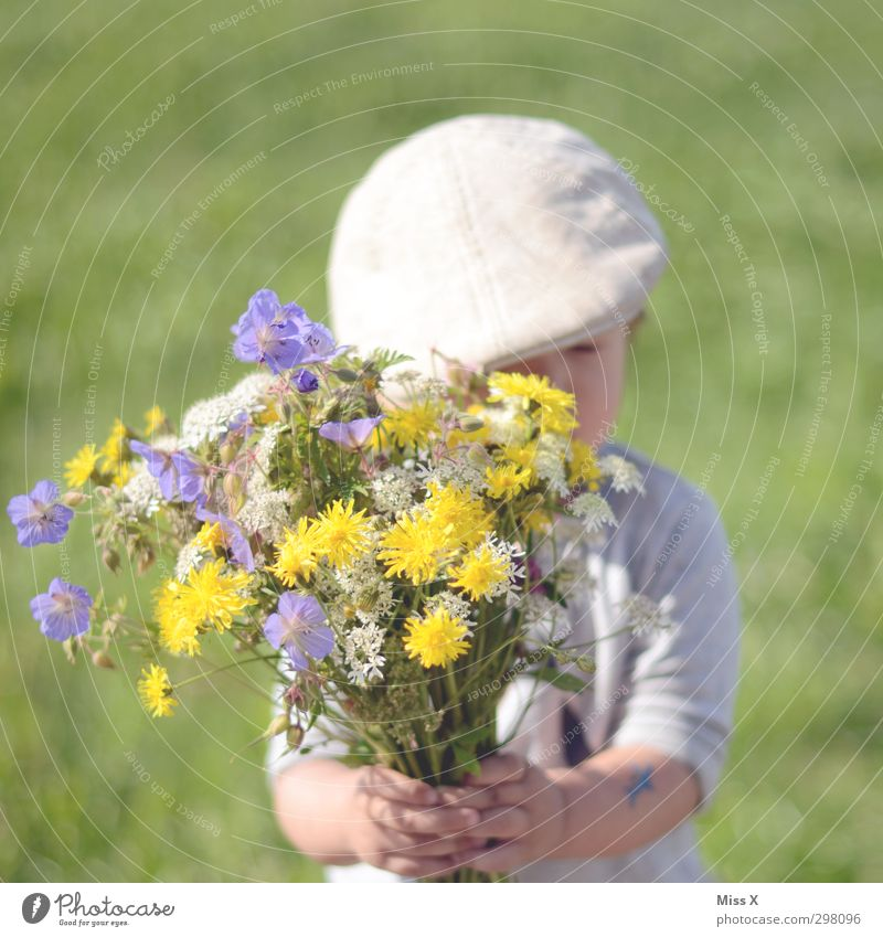 Human being Child Summer Flower Love Meadow Emotions Spring Blossom Garden Moody Infancy Birthday Cute Gift Blossoming