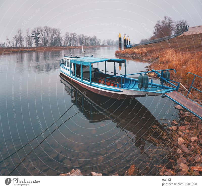Elbe Environment Nature Landscape Horizon Autumn Beautiful weather River bank Transport Means of transport Navigation Motor barge Lie Wait Serene Patient Calm