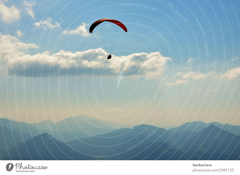 Airy above the clouds. Sports Paragliding 1 Human being Nature Elements Sky Clouds Climate Beautiful weather Alps Mountain Peak Flying Fantastic Infinity Tall