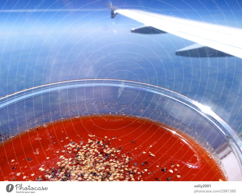 Tomato juice above the clouds... Airplane Beverage Salt Pepper Plastic cup View from the airplane Wing winglet Red salubriously Cliche Sunlight Blue sky Flying