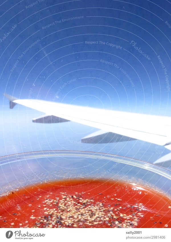 Tomato juice please... Beverage Juice Cloudless sky Aviation Airplane Passenger plane In the plane View from the airplane Wing Flying Drinking Healthy Above Red