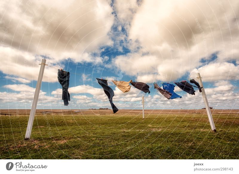 tumble dryers Lifestyle Landscape Sky Clouds Horizon Summer Beautiful weather Wind Meadow Island Holm hooge T-shirt Jeans Infinity Blue Yellow Green White
