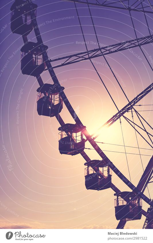 Silhouette of a Ferris wheel at sunset. Lifestyle Joy Leisure and hobbies Freedom Summer Summer vacation Sun Entertainment Sky To enjoy Violet Emotions Moody