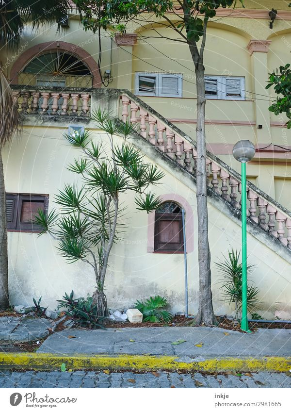 Trinidad Cuba Summer Exotic Palm tree Trinidade Town Deserted House (Residential Structure) Facade Window Stairs Handrail Banister Colonial style Street