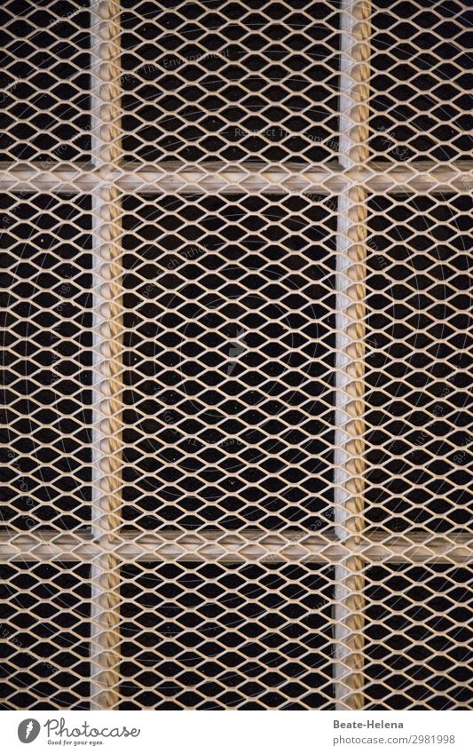 Secured zone (2) Lifestyle Cellar Workplace Craft (trade) Construction site Window Grating Protection Glazed facade Metal Net Exclusion zone To hold on Threat