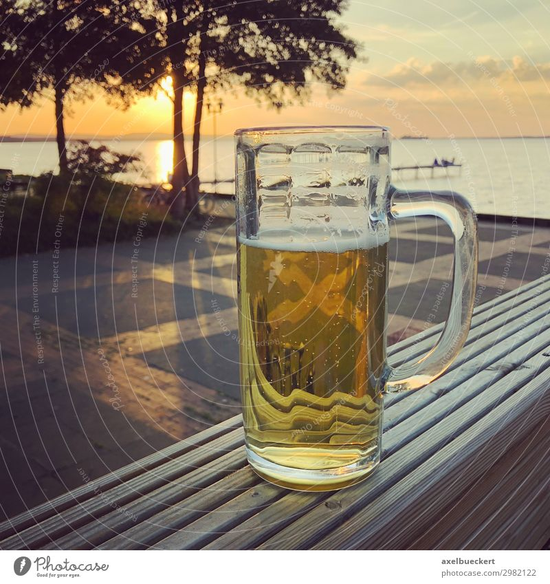 Vacation & Travel Nature Summer Landscape Ocean Relaxation Lifestyle Warmth Coast Germany Freedom Lake Leisure and hobbies Glass Joie de vivre (Vitality)