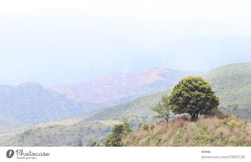 Sky Nature Beautiful Landscape Tree Loneliness Calm Far-off places Mountain Life Environment Grass Moody Horizon Dream Joie de vivre (Vitality)