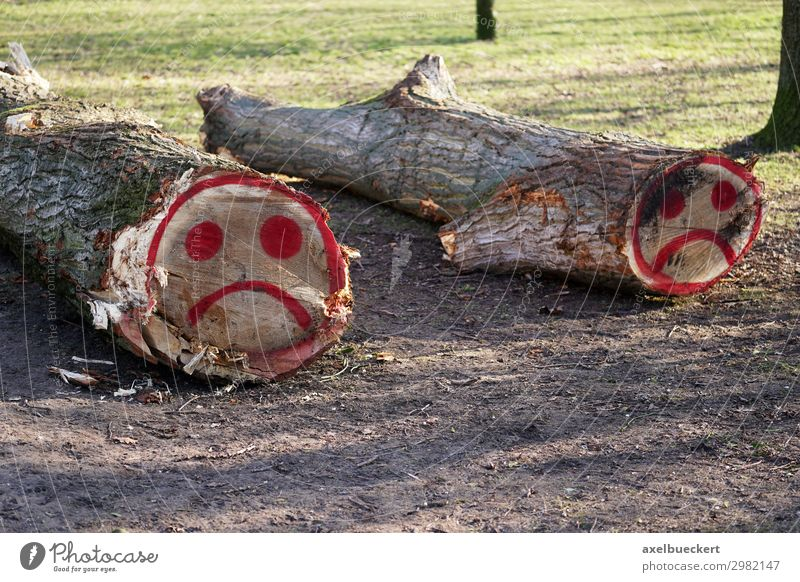 felled tree trunks with sad smiley graffiti Environment Nature Landscape Tree Park Forest Sign Graffiti Sadness Grief Smiley Tree trunk Fallen Wood