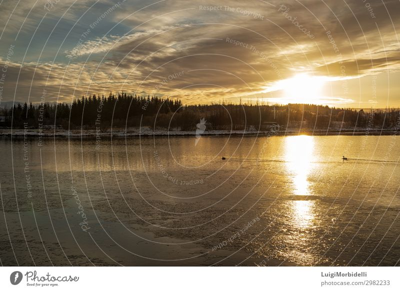 Sunset in Heidmork lake, Iceland Vacation & Travel Tourism Winter Snow Nature Landscape Sky Clouds Sunrise Frost Tree Forest Lake River Natural Gold Colour