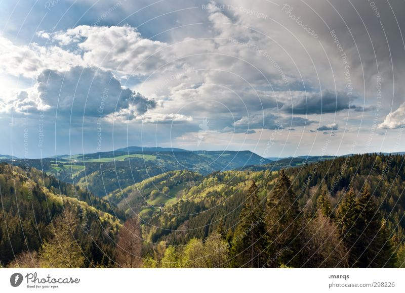 Black Forest Tourism Trip Far-off places Summer Mountain Hiking Environment Nature Landscape Plant Elements Sky Clouds Climate Climate change Beautiful Moody