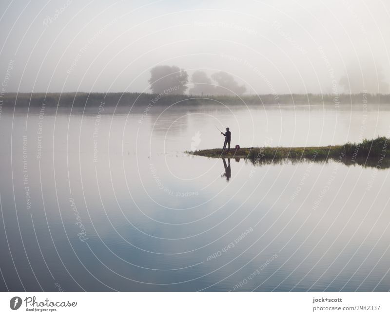 Good morning on the Oder Fishing (Angle) 1 Human being Landscape Sky Summer Fog River bank Brandenburg Stand Exceptional natural Emotions Contentment