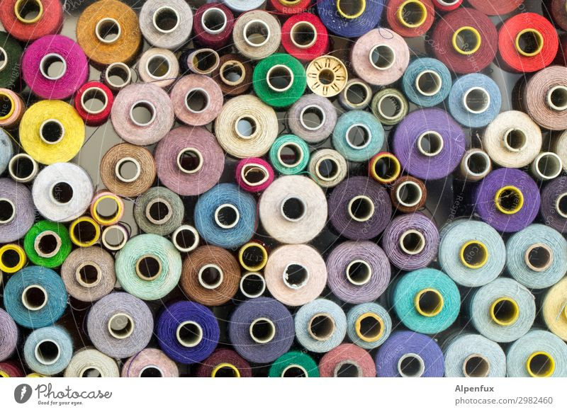 horny Bobbin Sewing thread Together Funny Multicoloured Relationship Bizarre Chaos Colour Financial Industry Shopping Communicate Competent Art Network Team