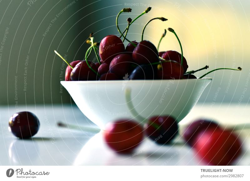 cherry Food Fruit Cherry Nutrition Organic produce Vegetarian diet Bowl Lifestyle Joy Healthy Eating Senses Summer Sun Nature To enjoy Fresh Glittering