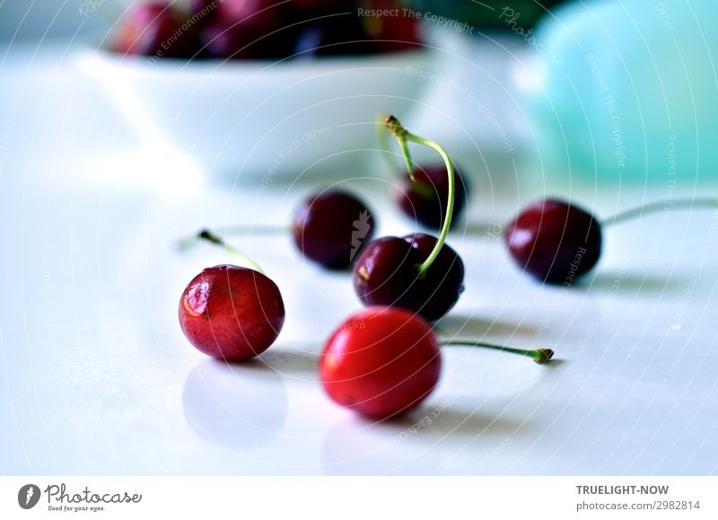 Cherries on a white table Food Fruit Cherry Nutrition Organic produce Vegetarian diet Summer To enjoy Fresh Healthy Delicious Natural Juicy Sweet Red Turquoise