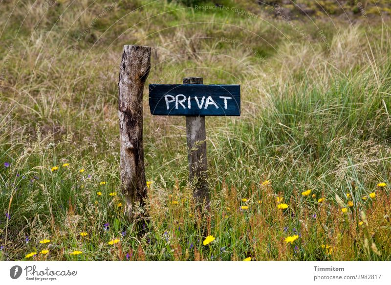 PRIVATE (QF) Vacation & Travel Environment Nature Plant Flower Grass Meadow Denmark Lanes & trails Pole Wood Signs and labeling Signage Warning sign Simple