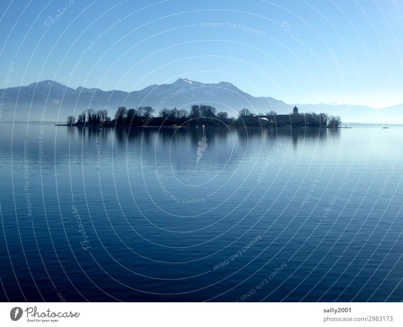 Winter day at Chiemsee... Landscape Cloudless sky Beautiful weather Tree Alps Mountain Lake Lake Chiemsee Bavaria Chiemgau Church Monastery Fantastic