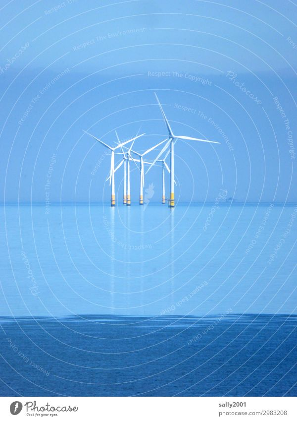 Electricity from outside... Energy industry Renewable energy Wind energy plant Cloudless sky Beautiful weather Ocean Rotate Stand Far-off places Maritime