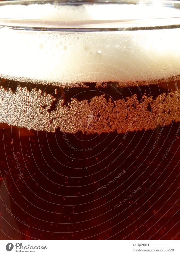refreshing Beverage Cold drink Alcoholic drinks Beer ale Froth Carbonic acid Glass Fluid Delicious Brown Thirst Trickle Refreshment dark beer Colour photo