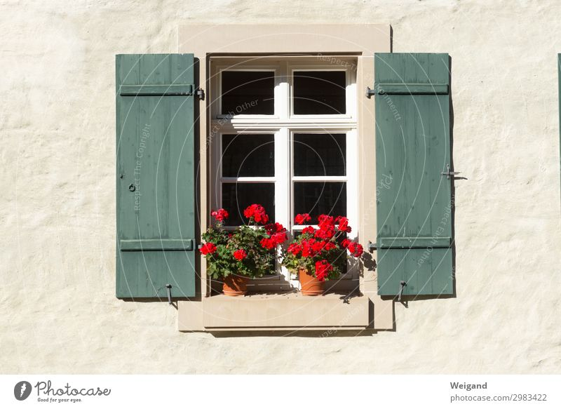 windows House (Residential Structure) Dream house Window Fragrance To enjoy Society Healthy Welcome Geranium Shutter Joie de vivre (Vitality) Country life