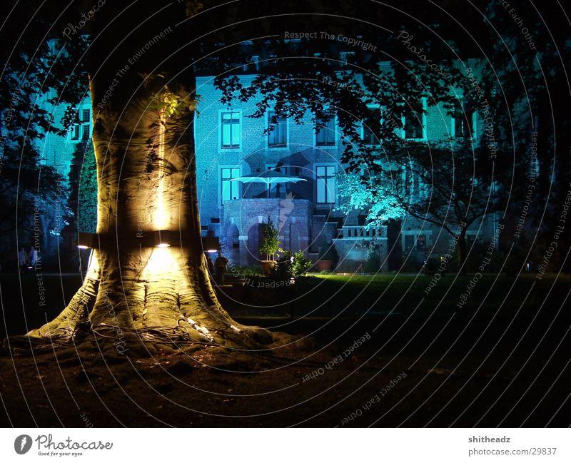illumina Light Tree Night Mystic Leisure and hobbies actual installation Lighting Castle