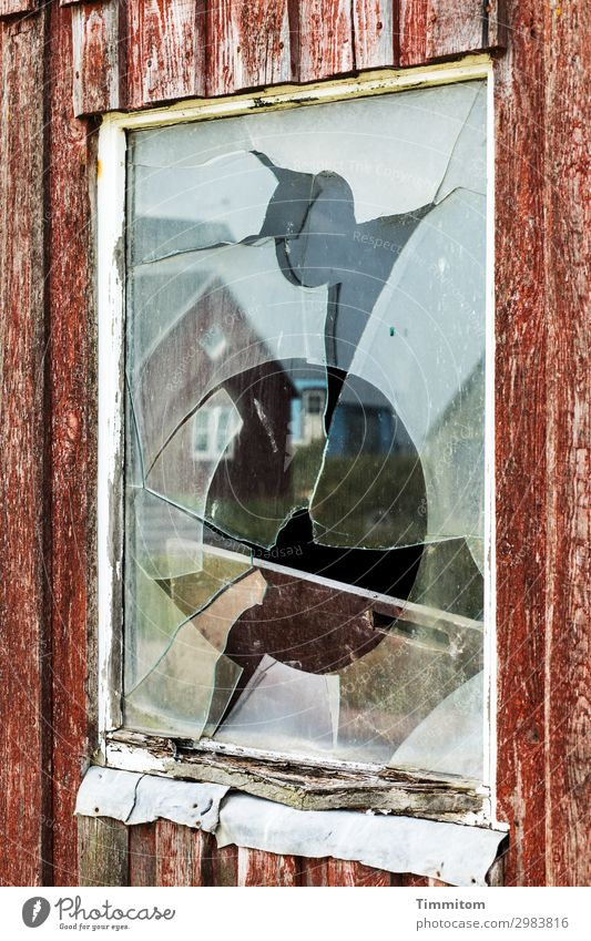 He was at work there! Vacation & Travel Fishery Denmark Fishermans hut Window Glass Aggression Broken Brown Black White Emotions Joy Anger Stupid discomfort
