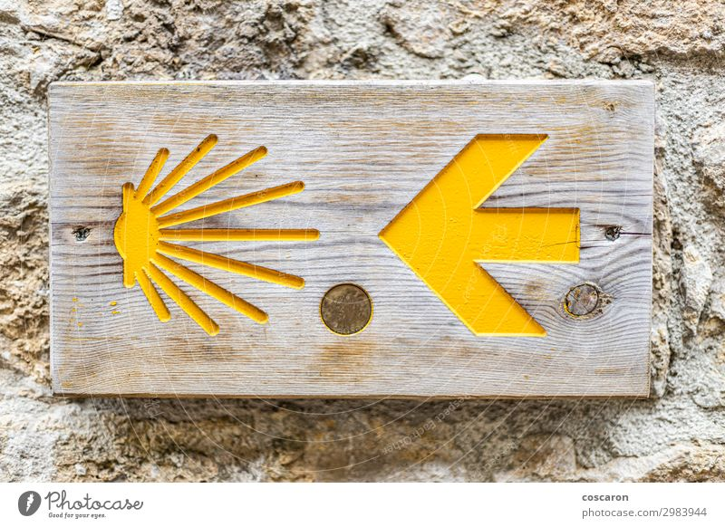 Camino de Santiago sign on a wall Vacation & Travel Tourism Trip Hiking Nature Cycling Pedestrian Street Lanes & trails Road sign Bicycle Stone Wood Sign