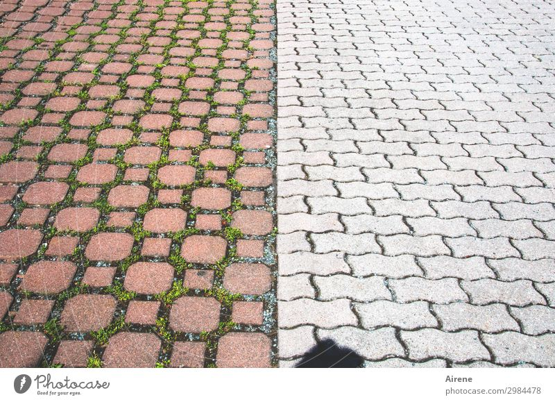 Free space top-heavy Head Shadow 1 Human being Courtyard Parking lot Street Paving stone Cobblestones Mosaic Pattern Pave Symmetry Two-piece Going Empty far