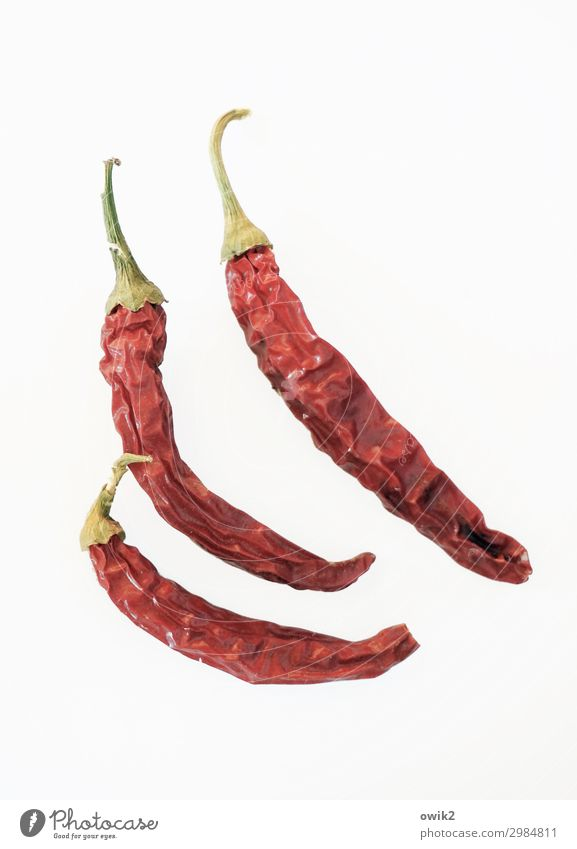 chill Chili Thin Together Dry Red Tangy 3 Colour photo Interior shot Copy Space right Copy Space bottom Long shot