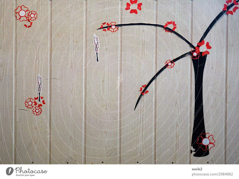 tree blossom Tree Blossom Wooden wall Label Simple Brown Red Black Hazy Sparse Thrifty Colour photo Interior shot Detail Abstract Pattern Structures and shapes