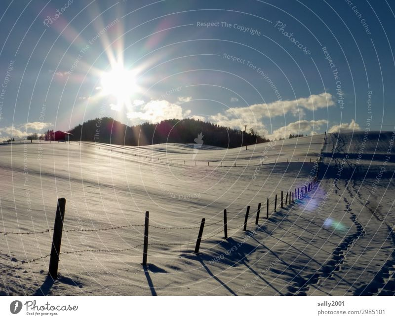 crystalline Environment Landscape Sunlight Winter Beautiful weather Hill Alps Contentment Loneliness Horizon Idyll Lanes & trails Snow Fence Fence post